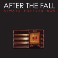 After The Fall Voices