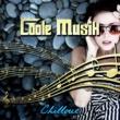 Elektronische Musik Akademie Coole Musik - Lounge Musik für Entspannung, Instrumentalmusik, Partymusik, Hintergrundmusik, Traumhafte Wohlfühlmusik, Elektronische Musik, Chillout Musik