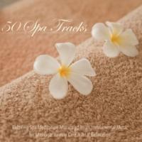 Tranquility Master Transcendental Meditation (Heartbeat, Tibetan Bowls and Ocean)