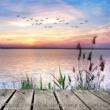 Oasis de Détente et Relaxation Nature, détente et découverte du bien être ‐ musique douce et relaxante pour relax, méditation, massage et repos