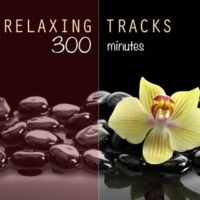 The Relaxation Masters Nature Soundscapes