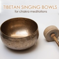 Tibetan Singing Bowls Meditation Reiki Healing (Hang Drum)