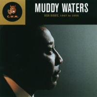 Muddy Waters I Just Want to Make Love to You