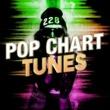 Various Artists Pop Chart Tunes