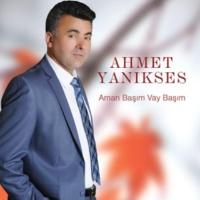 Ahmet Yanıkses Toycular