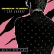 Brandon Flowers I Can Change [Michael Brun Remix]