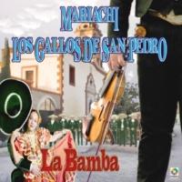 Mariachi Los Gallos De San Pedro Siempreviva