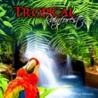 Healing Power Natural Sounds Oasis Tropical Rainforest ‐ Wild Nature Music Collection
