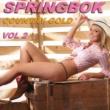 Springbok Springbok Country Gold - Vol 2