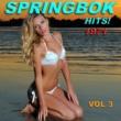 Springbok Springbok Hits 1971 - Vol 3