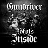 Gundriver What's Inside