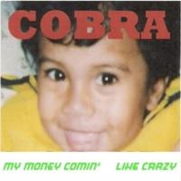 Cobra Hang On