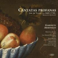 Gabinete Armónico&María Luz Alvarez Sinfonía, E Minor: II. Allegro