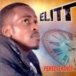 Elitt Perseverance