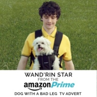 "Lee Marvin Wand'rin' Star (From The ""Amazon Prime - Dog with a Bad Leg"" T.V. Advert)"