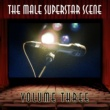 Various Artists The Male Scene, Vol. 3