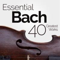 Filarmonica Italiana&Alessandro Arigoni Orchestral Suite No. 4 in D Major, BWV 1069: V. Réjouissance