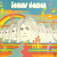 Tommy James I Lost My Baby