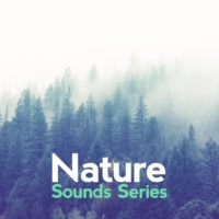 Nature Sound Series Birds of the Meadow