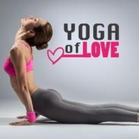Yoga & Yoga Essential Yoga Workout