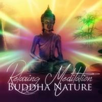 Mindfulness Meditation Universe Buddha Music
