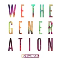 Rudimental New Day (feat. Bobby Womack)