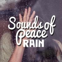 Outside Broadcast Recordings February Rain