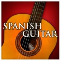 Zoltan Tokos Concierto de Aranjuez: I. Allegro con spirito