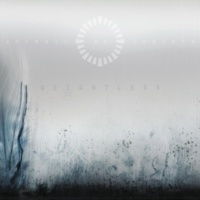 Animals As Leaders Cylindrical Sea