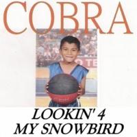 Cobra My Name