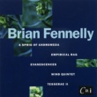 Various Artists Music of Brian Fennelly