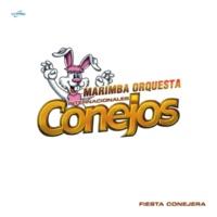 Marimba Orquesta Internacionales Conejos No Me Digas Que No