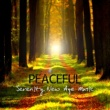 Various Artists Peaceful Serenity New Age Music - Relaxing Instrumental Songs for Salon, Spa & Wellness Center