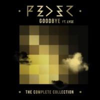 Feder Goodbye (feat. Lyse) [Alex Schulz Remix]
