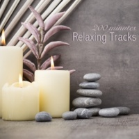 Spa Music Relaxation Meditation Deep Meditation - Singing Bowls & Nature Sounds