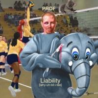 Prof Liability (Instrumental Version)