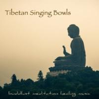 Meditation Guru Animals (Tibetan Singing Bowls)