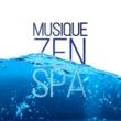 Oasis de Musique Relaxante Musique Zen Spa ‐ Détente zen massage et zen méditation, évacuer le stress, bien-être, sérénité, sons de la nature