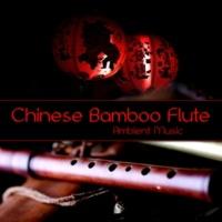 Flute Music Ensemble Yoga Workout