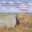 ヴォルフガング・シュルツ 牧神の午後への前奏曲?フランス近代フルート作品集