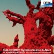 ウラディーミル・アシュケナージ/アイスランド交響楽団 交響曲 第 1番 ト短調, 2. Andante comodamente