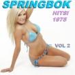 Springbok Springbok Hits 1975 - Vol 2