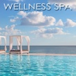 Wellness Wellness Spa ‐ Spa Resort Soothing Music, Relaxing and Peaceful Songs with Ambient Sounds for Massage & Stress Relief