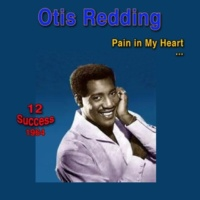 Otis Redding Security