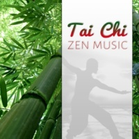 Tao Te Ching Music Zone Koto