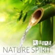 Harmony Nature Sounds Academy Nature Spirit - Reiki ‐ Deep Ocean, Forest, Birds, Flute Music, Chakra Massage, Meditation, Yoga, Spa
