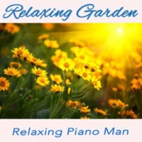 Relaxing Piano Man Orchid