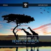 Kaan Koray Heart of Africa (Remixes)