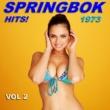 Springbok Springbok Hits 1973 - Vol 2