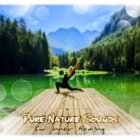 Spa Music Consort Pure Nature Sounds for Inner Healing (Salutate to the Sun)